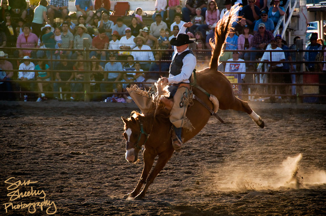 HaileyRodeo_20080704_0079-copy