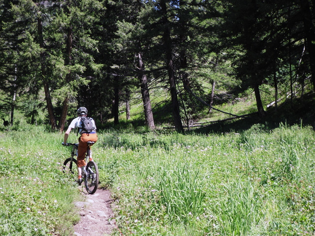 Mike on Citizen's Trail, Adams Gulch.