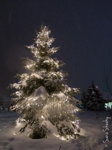 Christmas_20141224_040